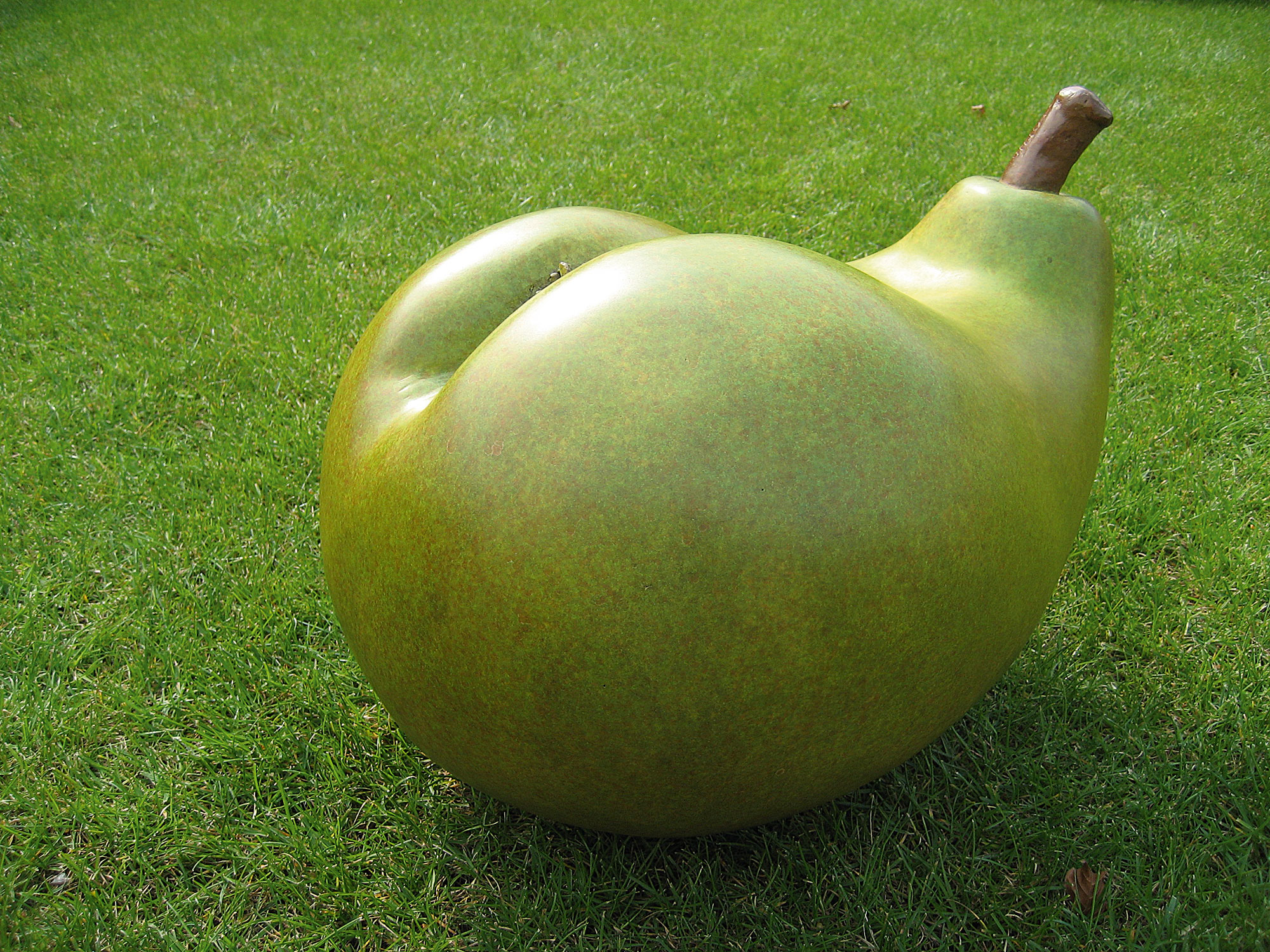pear-on-grass
